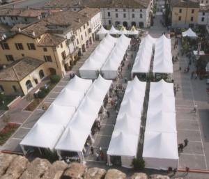 Allestimento per manifestazione florvivaistica a Canneto (Mantova)